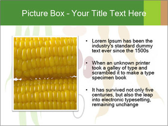 0000080683 PowerPoint Template - Slide 13