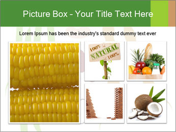 0000080683 PowerPoint Template - Slide 19