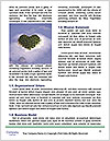 0000080685 Word Templates - Page 4