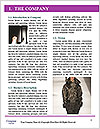 0000080689 Word Template - Page 3