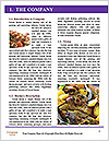 0000080692 Word Template - Page 3