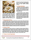 0000080695 Word Template - Page 4