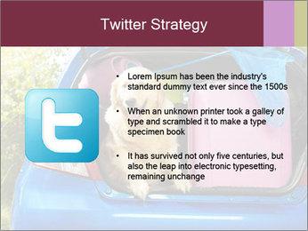 0000080710 PowerPoint Template - Slide 9