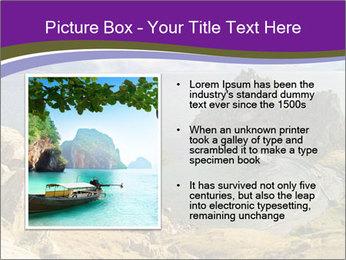 0000080715 PowerPoint Template - Slide 13