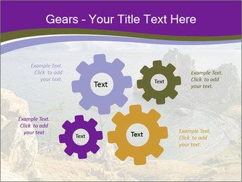 0000080715 PowerPoint Template - Slide 47
