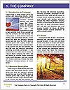 0000080718 Word Template - Page 3
