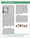0000080719 Word Template - Page 3