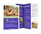 0000080727 Brochure Template