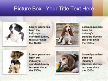 0000080727 PowerPoint Template - Slide 14