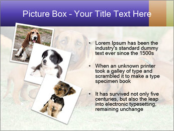 0000080727 PowerPoint Template - Slide 17
