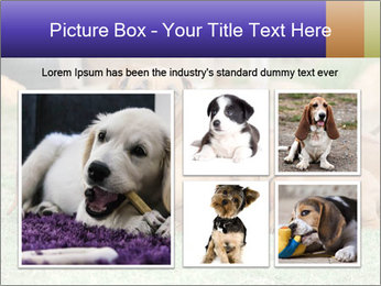 0000080727 PowerPoint Template - Slide 19