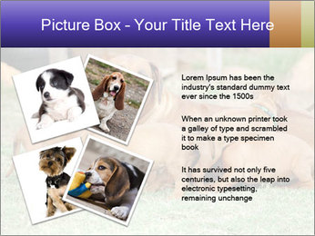 0000080727 PowerPoint Template - Slide 23