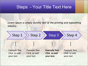 0000080727 PowerPoint Template - Slide 4