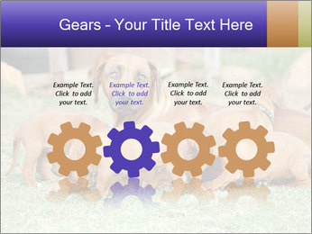 0000080727 PowerPoint Template - Slide 48