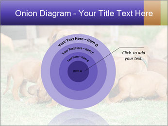 0000080727 PowerPoint Template - Slide 61