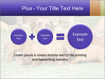 0000080727 PowerPoint Template - Slide 75