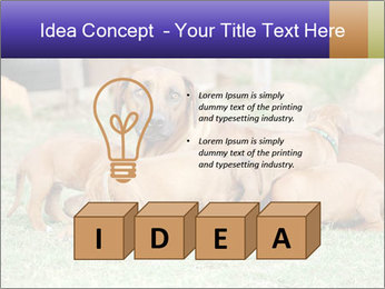 0000080727 PowerPoint Template - Slide 80