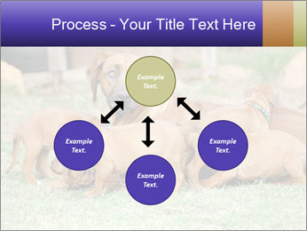 0000080727 PowerPoint Template - Slide 91