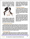 0000080727 Word Template - Page 4