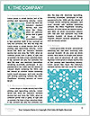 0000080730 Word Template - Page 3