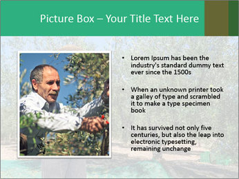 0000080734 PowerPoint Template - Slide 13