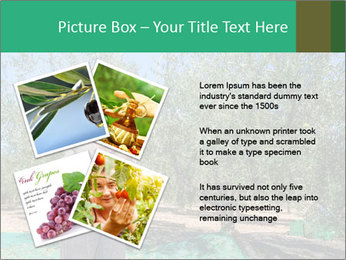 0000080734 PowerPoint Template - Slide 23