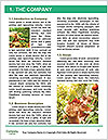 0000080734 Word Templates - Page 3