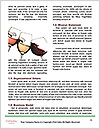 0000080738 Word Template - Page 4