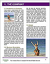 0000080740 Word Template - Page 3