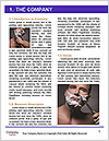 0000080756 Word Template - Page 3