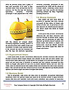 0000080760 Word Template - Page 4