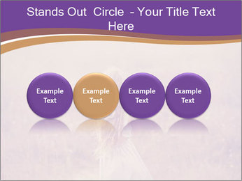 0000080761 PowerPoint Template - Slide 76
