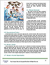 0000080764 Word Template - Page 4