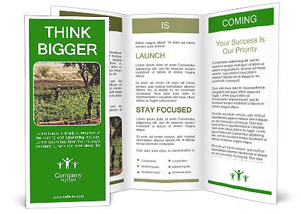 0000080772 Brochure Template