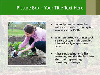 0000080772 PowerPoint Template - Slide 13