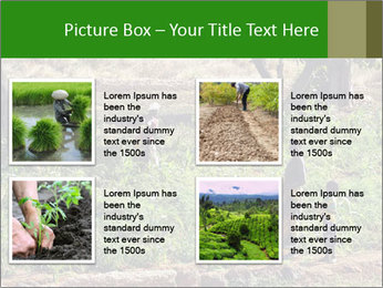 0000080772 PowerPoint Template - Slide 14