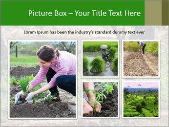 0000080772 PowerPoint Template - Slide 19