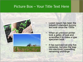 0000080772 PowerPoint Template - Slide 20