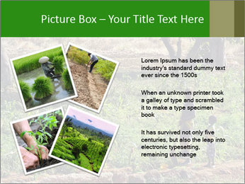 0000080772 PowerPoint Template - Slide 23