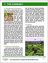 0000080772 Word Template - Page 3