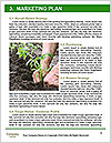 0000080772 Word Template - Page 8