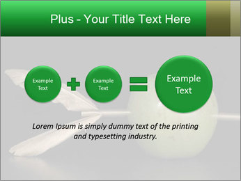 0000080773 PowerPoint Template - Slide 75