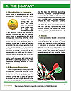 0000080773 Word Template - Page 3