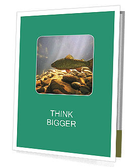 0000080775 Presentation Folder