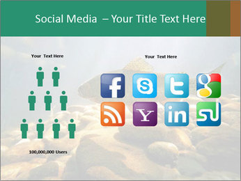 0000080775 PowerPoint Template - Slide 5