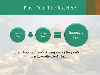 0000080775 PowerPoint Template - Slide 75