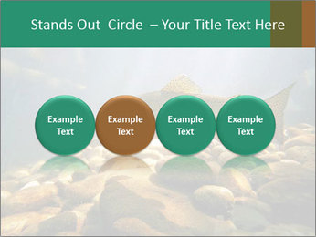 0000080775 PowerPoint Template - Slide 76