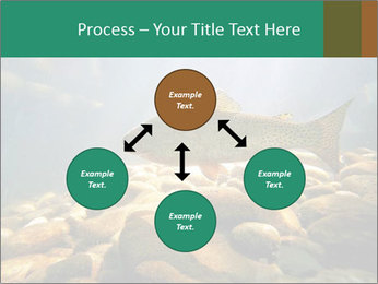 0000080775 PowerPoint Template - Slide 91