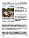 0000080775 Word Template - Page 4