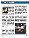 0000080780 Word Template - Page 3